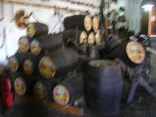 Museo del vino: Exposición