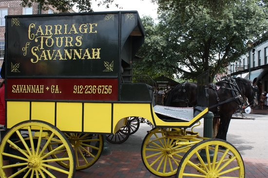 Carriage Tours Of Savannah Picture Of Carriage Tours Of Savannah