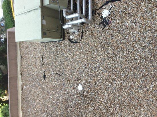 Atlanta Marriott Suites Midtown: Trash on roof