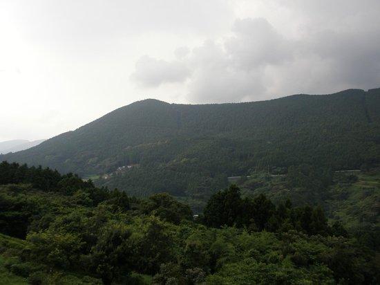Yamanoren : 見渡すかぎり山