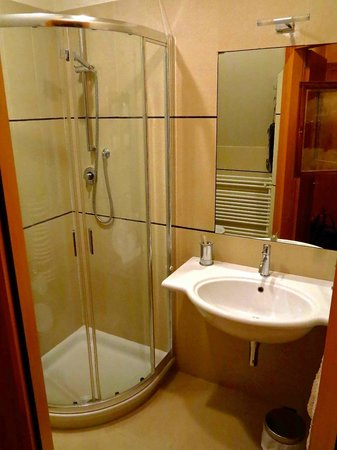 Ca' Barba B&B: Clean and spacious bathroom