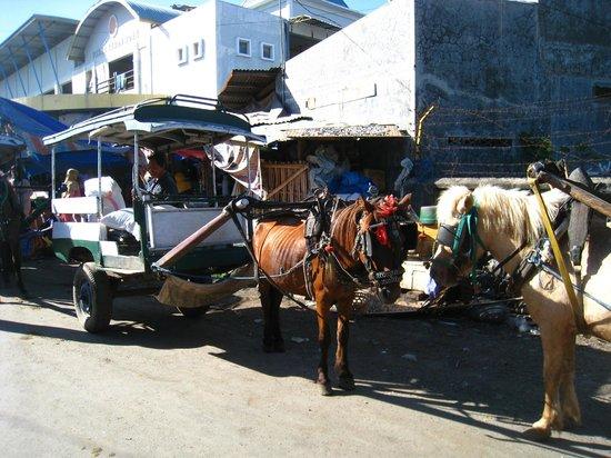 Sunset House Lombok : Cidomo on the street