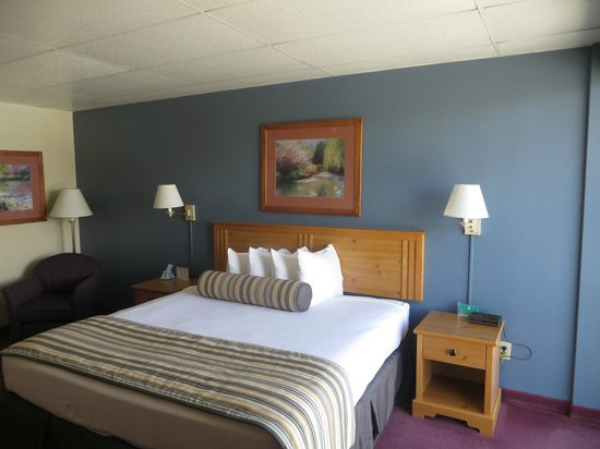 Wyndham Garden Carson City Max Casino : King size bed.