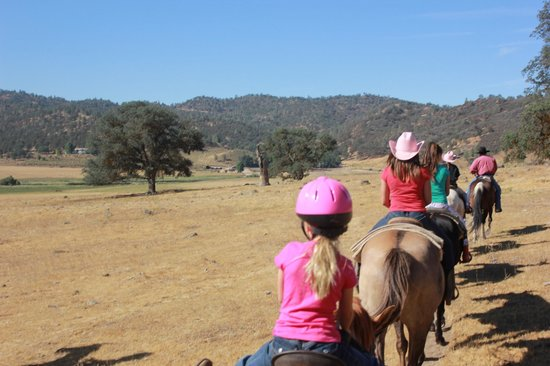 Rankin Ranch: Trail Rides!