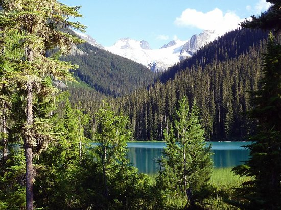 Grimm's Gourmet & Deli: Joffre Lake number 2 : worth the hike !