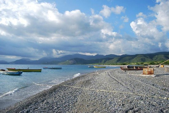‪This Is Jamaica Co. Ltd.‬