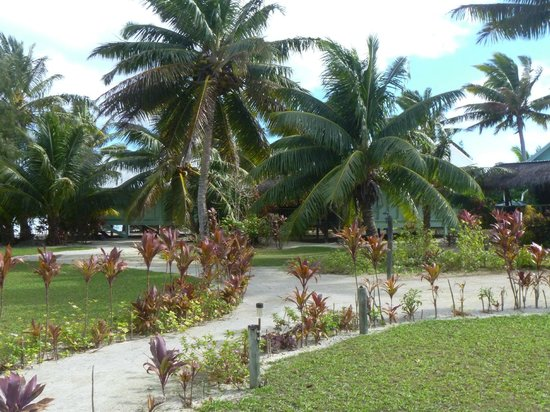 Inano Beach Bungalows: central garden area