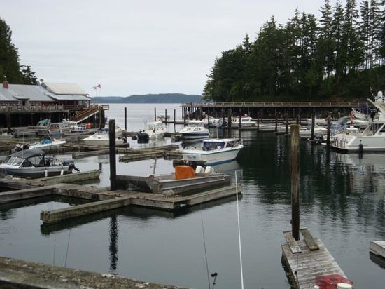 Telegraph Cove Resort: The water view