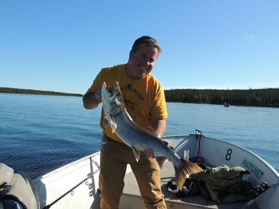 Hatchet Lake Lodge: Incredible fishing!