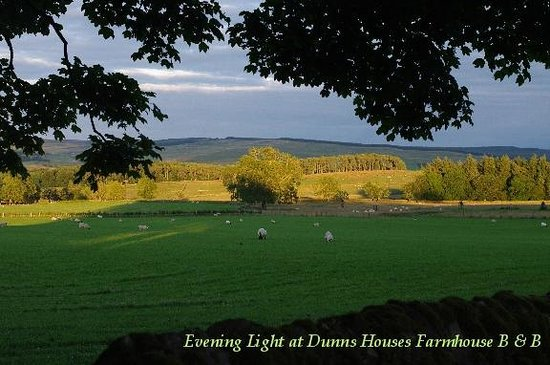 Dunns Houses Farmhouse Bed & Breakfast: Sunset on the fields