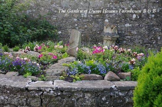 Dunns Houses Farmhouse Bed & Breakfast: The garden
