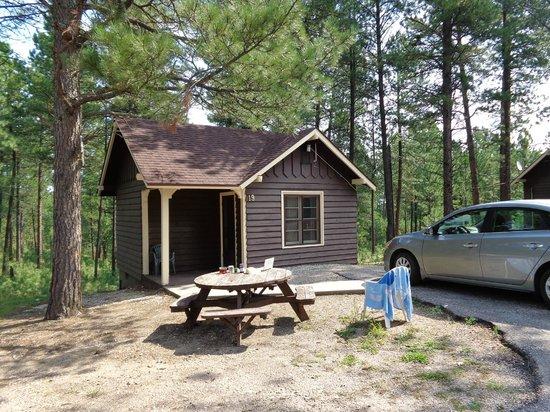 Legion Lake Lodge: Legion Lake Cabin