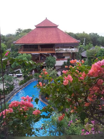 Green Garden: view from room 43