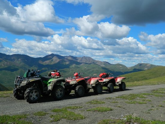 Heiny's ATV Adventures : Our rides for the day