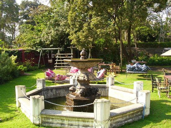 The Blue Heron : Fountain in the Garden