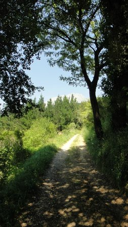 Casa Gustavo Holiday Accommodation in the Picos de Europa: Footpath into Potes from Casa Gustavo Guesthouse