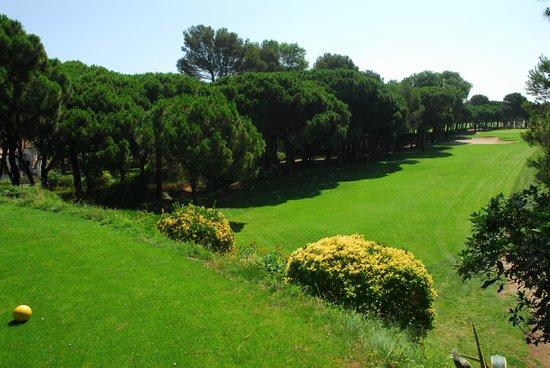 Golf Platja De Pals : Tee hoyo