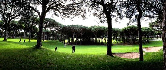 Golf Platja De Pals : hoyo 9