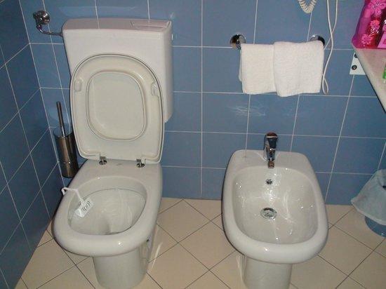 Aer Hotel Malpensa: Toilet