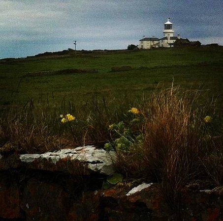 Lighthouse at Caldey Island seen from the nature walk.