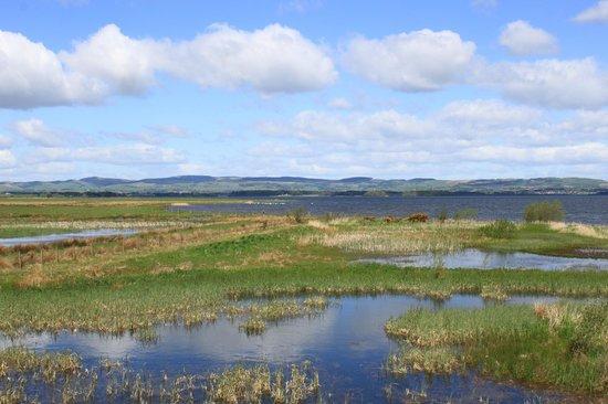 RSPB Loch Leven National Park Reserve