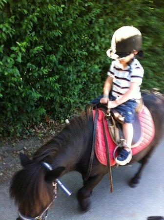La Grande Métairie : Pony rides