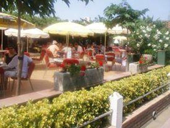 Hotel Riomar: Bar/terraza