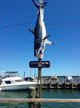 Claudio's Restaurant : Sharknado outside Claudio's