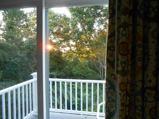 Glen Cove Inn & Suites: Sunrise coming through the trees