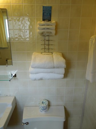 Dew Drop Inn: Towel rack above toilet