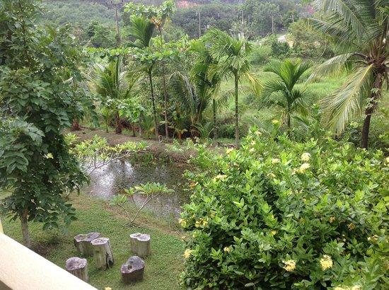 Chez Charly Bungalow: lieu paisible vu de mon bungalow