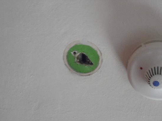 Scole Inn: Hole above bed