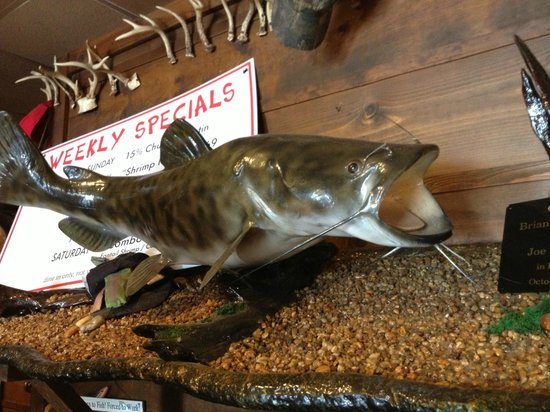 Ezell's Catfish Cabin: Big Cat