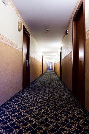 Roma Domus Hotel : Corridoio