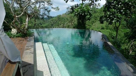 Natura Resort and Spa : calme et debordement sur la jungle!