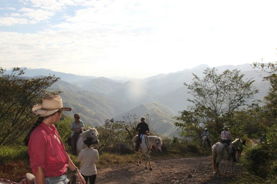 Barking Horse Farm: Rainforest Trek 2013