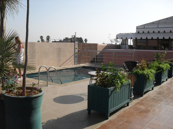 Riad Bahia Salam : The pool up on the roof top