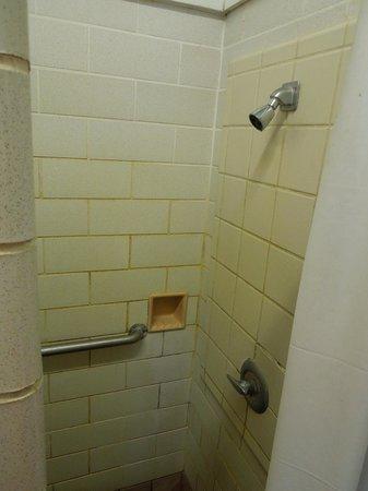 Harrisville State Park: Shower in men's room