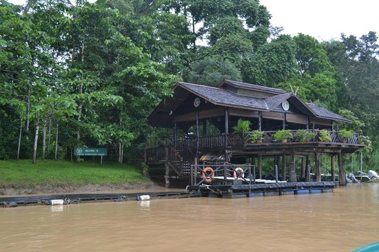 Sukau Rainforest Lodge: View of the lodge from the river