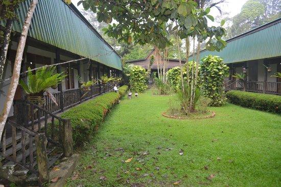 Sukau Rainforest Lodge: Inner courtyard/garden
