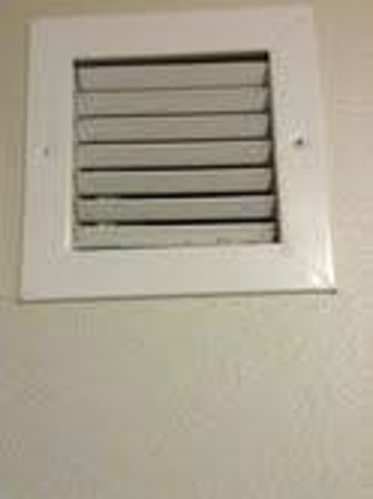 Holiday Inn Express Hotel & Suites Batavia - Darien Lake: gross vent