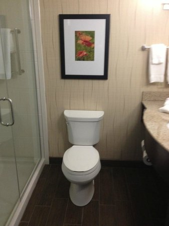 Hilton Garden Inn Dayton South-Austin Landing: Throne