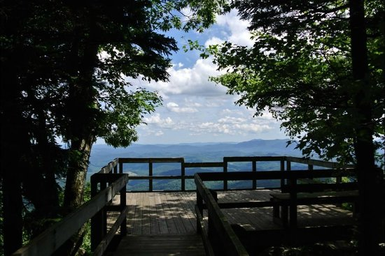 Grayson Highlands State Park: Beautiful view that you just have to see for yourself!