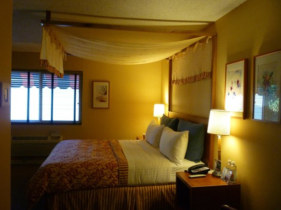 Wild Palms Hotel - a Joie de Vivre Hotel : You've got to love the canopy over the bed!