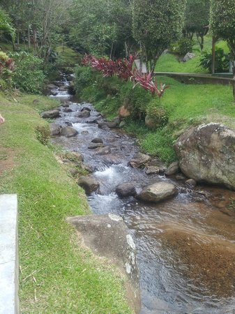 Hotel Rio Perlas Spa, Resort & Casino: Nice river its a pity its being contaminated