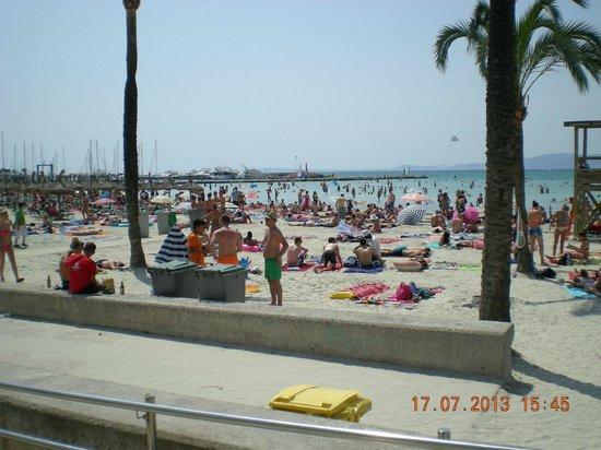 "Vista Odin Hotel: La ""playa de Palma"", située à 5 minutes à pied."