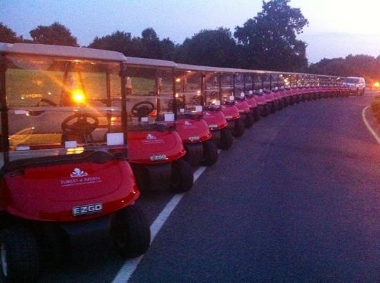 Marriott Forest of Arden Hotel & Country Club: golf buggy car park!