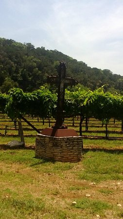 La Cruz de Comal Wines, Ltd.