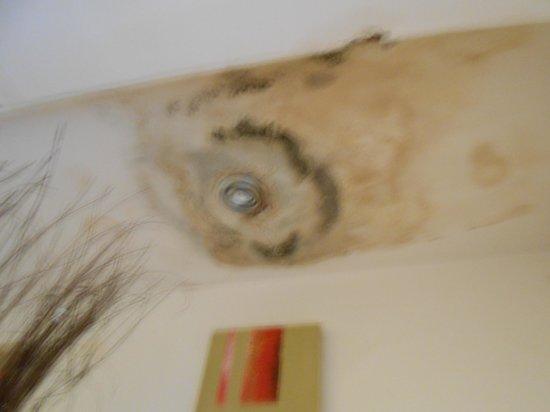 The Royal Oak: Hallway