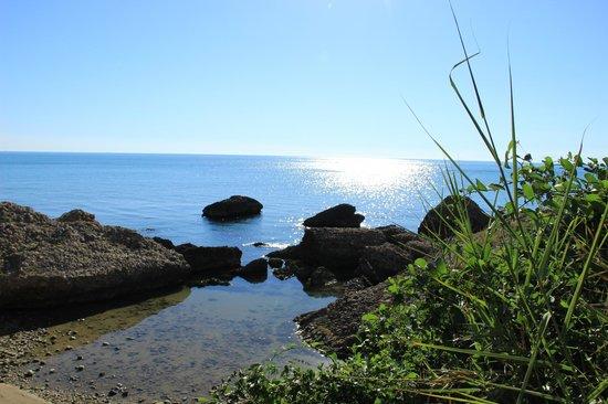 Camping Residence Uliveto: vista